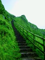 The Giants Causeway 1 by xlizx