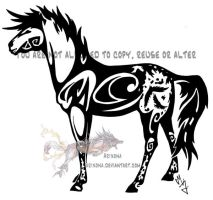 Tribal appaloosa by Arixona