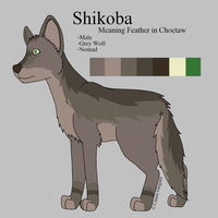 Shikoba Reference by The-Smile-Giver