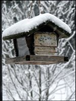 Winter feeder by IlytbaIaw