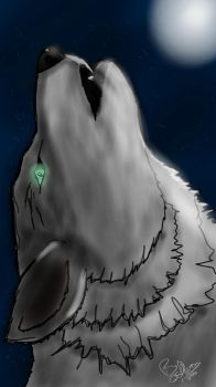 The Wolf and the Moon by Qsh879