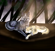 Two wolves commission by VelociyDrawing17