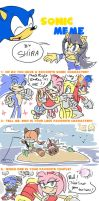 My Sonic Meme by Shira-hedgie