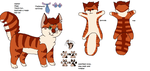 Xaviers Revamped Catsona design by Sikey101