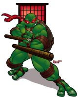 Francisco, the Fifth Turtle by lordmesa