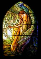 Stained Glass Window - 3 by LadyAhz