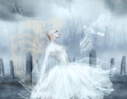 The angel at funeral by annemaria48