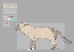 Matachi Ref 2013 by Blockbeap