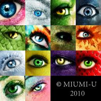 Eye ID by Miumi-U
