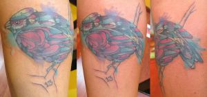 Watercolor-ish Bird by Dripe