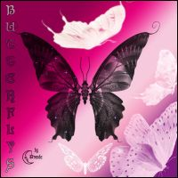 Butterflys Photoshp Brushes by Coby17
