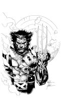 yu wolverine larger by antalas