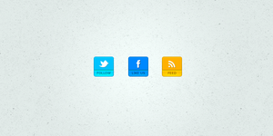 Facebook, Twitter and RSS icon Pack 2 + PSD by suraj78