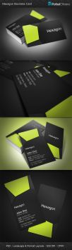 Hexagon Business Card by Rafael-Olivra