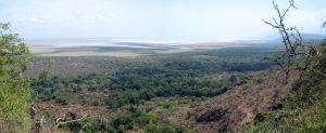 Lake Manyara by Majnouna