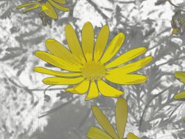 Flower Texture 15 by dknucklesstock