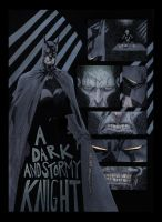 The Dark Knight by AlexPerkins