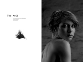 the wolf. by niels-Isi