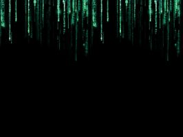 The Matrix Revolutions by FL1P51D3