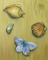 From Beach Combing by Demiie