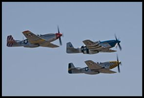 Planes of Fame 8 by AirshowDave