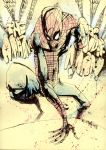 The Amazing Spider-Man. by JimMahfood-FoodOne