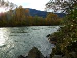 Blue Herron park / Vedder river~11/4/2016~4 by Matthew-Fuller