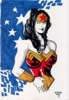 Wonder Woman CC Paris 2013 by guillomcool
