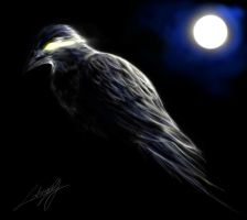 Raven in Moonlight by Vyrilien