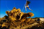 bitty vs. zombie kitty by lilbittydemon