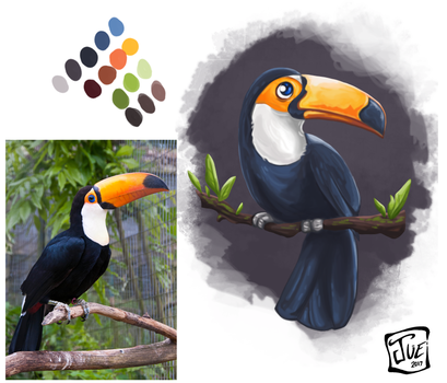 Study01 Toucan by WaffleJuey
