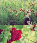 .stop and smell the roses. by GrotesqueDarling13