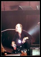 Metallica - Stade de France 2012 II by Wild-Huntress
