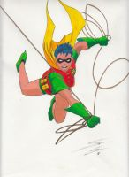 Robin Color by bustercannon210