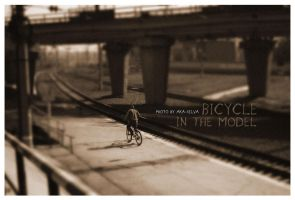 BICYCLE IN THE MODEL by jotapehq