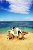 KISS ON THE CAMEL by ratulangi