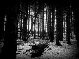 black forest by deadforest17