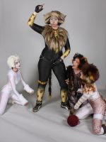 Tugger and his groupies by Krissi-Ly
