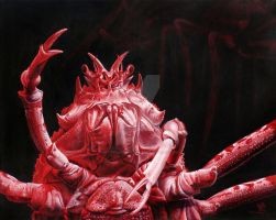 Crustacean Salutation by ART-fromthe-HEART
