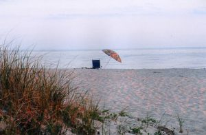 Another Cape Cod Photo by Stevie-Wonder