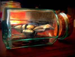 Firefly in a Jar / Ship in a Bottle by Metzae