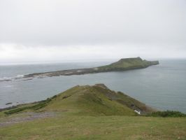 Nature 262 worm's head by Dreamcatcher-stock