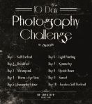 10 Day Photography Challenge by Zinantis