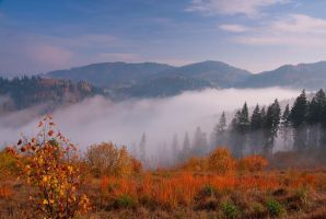 Autumn Mist 2 by lica20
