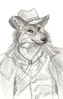Outlaw Coyote by Foxfeather248