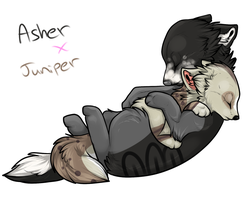 Asher x Juniper -1 PUP SLOT OPEN- by Twine-Adopts