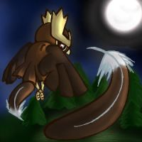 Fly:Noctowl by Kureculari