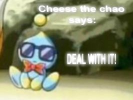 Cheese the chao says by raflynnzel