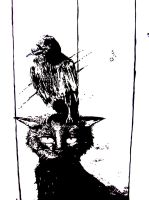The raven made my day, really by janina