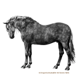 Bowing Andalusian Dappled by DragonFyreStudio